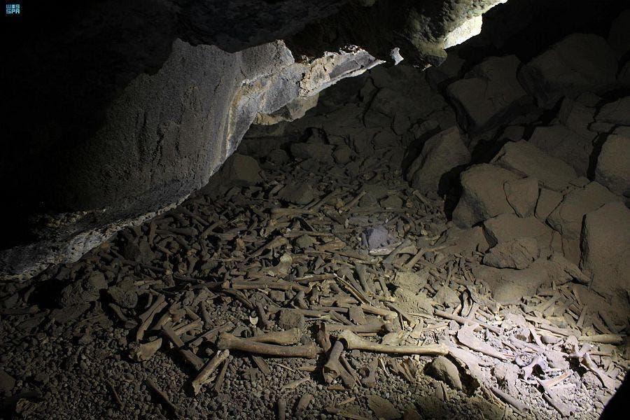 6e8f6ed2 feb6 42b5 b759 230e64b73fb0 - عمره 7000 سنة.. شاهد اكتشاف أثري جديد في كهف أم جرسان بالمدينة